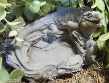 lizard iguana latex mold / plastic backup  concrete mold plaster reptile mold