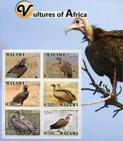 Malawi 2018 MNH Vultures of Africa Hooded Vulture 6v M/S Birds Stamps