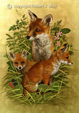 Signed Fox & Cubs Print by Robert J. May