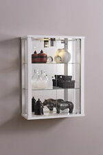 Wall Mounted Glass Display Cabinet Double Retail or Domestic with Internal Light