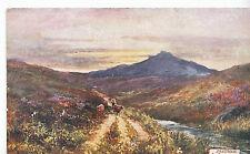 Devon Postcard - Dartmoor - At Prince Town      ZZ3208