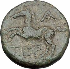 Termessos Major in Pisidia 71BC Zeus Horse Authentic Ancient Greek Coin i46969