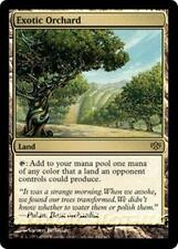 EXOTIC ORCHARD Conflux MTG Land RARE