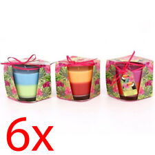 Set of 6 2 Layered Candle Parrot Tropical Home Decoration Wax Glass Pot Colour