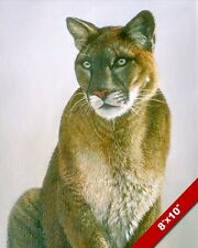WILD MOUNTAIN LION COUGAR PUMA BIG CAT ANIMAL PAINTING ART REAL CANVAS PRINT