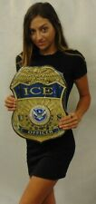 """ICE BADGE all Metal Sign 13"""" x 17"""" SIGN       See Video For Discount"""