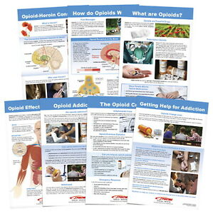 Sportime All About Opioid Drugs Bulletin Board Charts, Set of 7, Grades 5