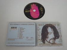 DAVE STEWART AND THE ESPIRITUAL COWBOYS/(BMG/RCA PD74710) CD ÁLBUM