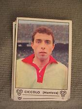FIGURINA PANINI CAMPIONATO 1964/65 - MANTOVA - CICCOLO - OTTIMO
