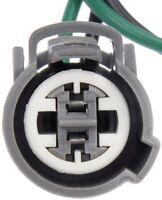 Power Steering Pressure Switch Connector Dorman 645-203