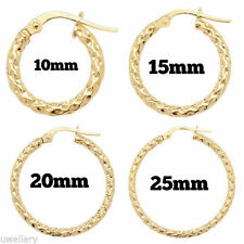 Yellow Gold Plated Hoop Fine Earrings without Stones