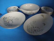 VINTAGE SELTMANN WEIDEN BAVARIA GERMANY SERVING DISH/BOWL FINE CHINA 14 PC SET