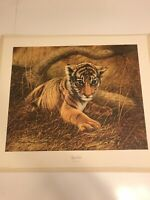 "Charles Frace Tiger Cub 21 1/2""x 18 1/2"""