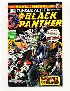 JUNGLE ACTION #19 MARVEL 1976 BLACK PANTHER VS KKK CLAN DON MCGREGOR STORY