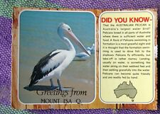 Rare Vintage Post Card. GREETINGS FROM MT. ISA Q.