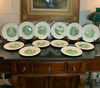 "12 Wedgwood Smith College 9 3/8"" Green Luncheon Plates 1932 Northampton, MA"