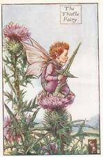Flower Fairies: The Thistle Fairy Vintage Print c1930 by Cicely Mary Barker