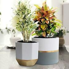 """White Ceramic Flower Pot Garden Planters 6.5"""" Pack 2 Indoor, Plant with Gold Us"""