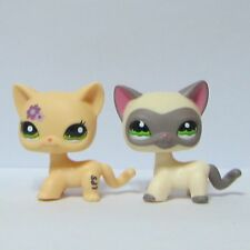 2x Littlest Pet Shop LPS Animal Toy Shorthair Kitty Cat #1116 Siamese #1962 Cat