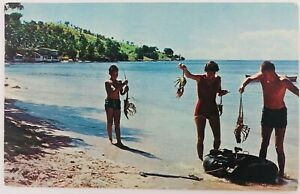 Vintage San Juan Puerto Rico Visitors Show Catch of Lobsters Postcard 1966