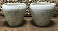 Hanging Planter set of 2 Studio Pottery Fern Pattern signed small succulent