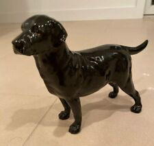 Rare Royal Doulton English Bone China Black Labrador Retriever Hn 2667