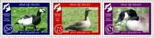 "GB Local Stamps: Isle of Islay (2019): ""Islay Geese"" UM set"
