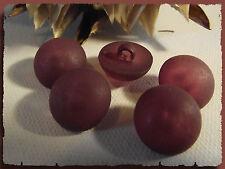 6 BOUTONS Rouge Bordeaux demie Sphère * 18 mm 1,8 cm pied queue