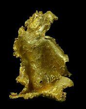 18.05 mm RARE CRYSTAL LEAF GOLD GEORGETOWN QLD AUSTRALIA 9