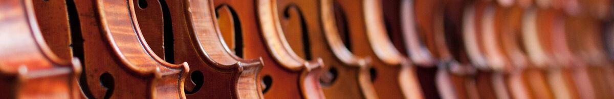 Wise Violin Shop