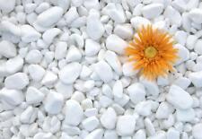 More details for decorative marble extra white stones / pebbles  * home & garden * aquarium 1-3cm