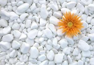 Decorative MARBLE EXTRA WHITE Stones / Pebbles  * HOME & GARDEN * AQUARIUM 1-3cm