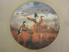 MALLARD DUCK collector plate DAVID MAASS Joining Up RARE Brown & Bigelow