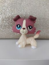 Authentic LPS 1262 chien 🐶 Dog Colley Collie Peshop Hasbro
