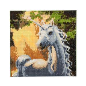 Craft Buddy Framed Crystal Art Kit 30 x 30cm (Medium)