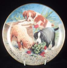 ASPCA 'Triple Trouble' Puppy Dogs Limited Edition Collector Plate