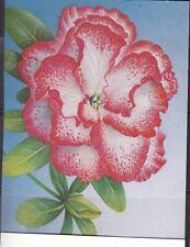 3 kaarten bloemen floraliën spotprijs
