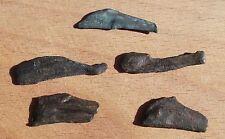 Greek Olbia-Ольвия 5 Old Coins BIG DOLPHIN Дельфин 5th - 3th Century BC #2 RARE