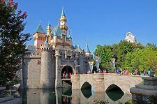 Disneyland California 4500+ Photo dvd Scrapbook Mickey Mouse cd Disney World