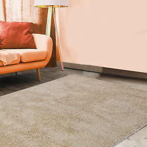 Fluffy Shaggy Rug Soft Polypropylene Shaggy Rug For Bed & Living Room Recycle