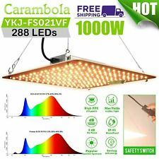 Carambola 1000W Led Grow Light Sunlike Full Spectrum Indoor Ir for Hydroponic