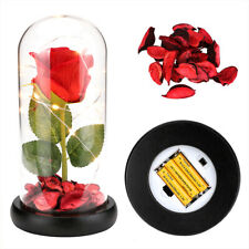 Beauty and The Beast Full Kit, Red Silk Rose Flowers, Led Light, Fallen Petals