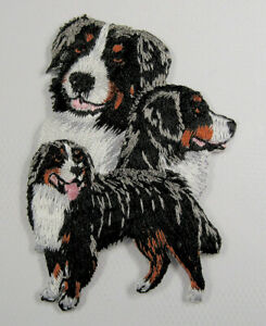 Bernese Mountain Dog heat seal embroidered badge