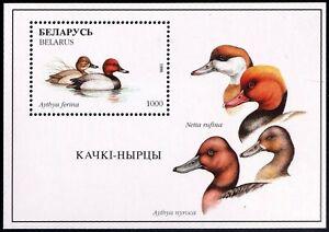 1996. Belarus.Birds. DUCKS. S/sh Sc. 175. MNH
