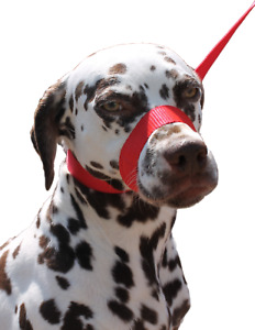 RED Dog Lead Stop dogs pulling slip lead collar halter training figure of 8.