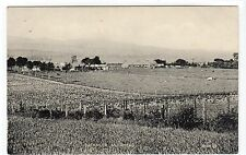 BACKMUIR, MUIRHEAD: Angus postcard (C10913)