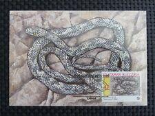 BULGARIA MK SCHLANGE SNAKE MAXIMUMKARTE CARTE MAXIMUM CARD MC CM c2512