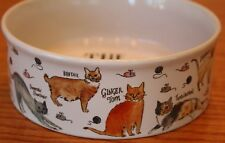 Milly Green The Cat Lover Bowl Kitty Dish Tabby Siamese Birthday Mom Halloween