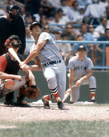 Boston Red Sox CARL YASTRZEMSKI Glossy 8x10 Photo Baseball Print Poster