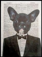 bulldog francés Impresa VINTAGE Diccionario Página Decoración de pared imagen